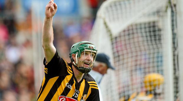Henry Shefflin celebrates after scoring his side's opening goal against Limerick yesterday