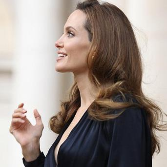 Angelina Jolie will have a cameo role in The Great Beauty