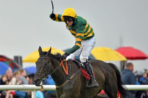 Bob Lingo, with Mark Walsh up, on their way to winning the Galway Plate at Ballybrit yesterday