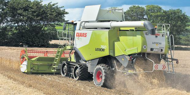 A CLASS ACT: While this Cassia winter barley was yielding well at 3.6t/ac at 19pc moisture and 67kph for Donal Twomey and his two sons, Con and Dan, at Robert's Cove, Cork, the weather is making progress heavily dependent on this new tracked Claas 760. The machine is listed at €300,000. O'GORMAN PHOTOGRAPHY