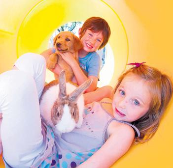 James and Isabel Mulcahey from Ballinhassig play with a dog and rabbit in a tunnel at the playground at Rumley's Open Farm in Waterfall, Co Cork yesterday