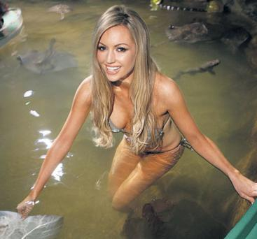 Rosanna swims with the fish at SeaLife in Bray. Her Playboy beach shoot promises to be even more exotic.