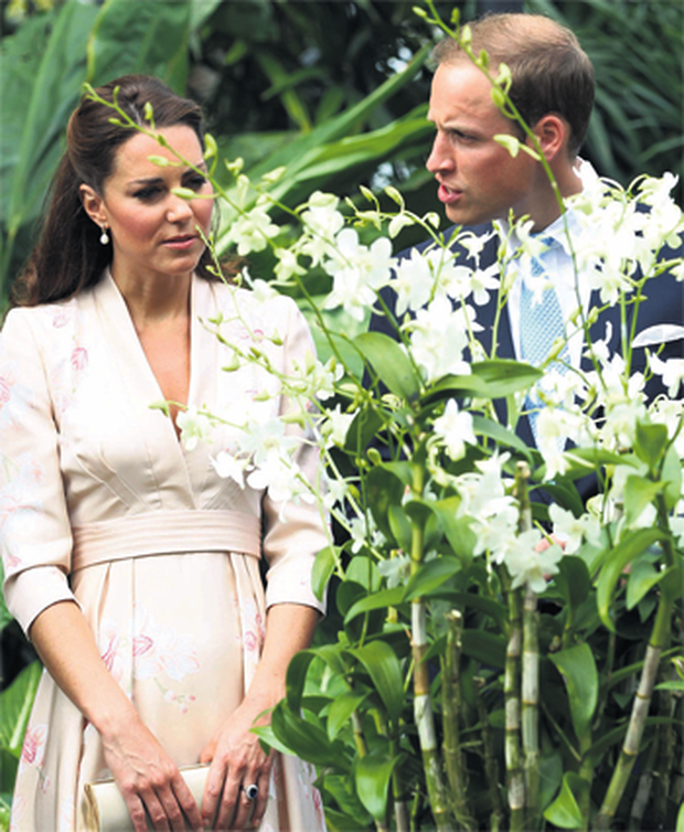 Prince William and his wife Kate Middleton admire the orchid named after Princess Diana at Singapore's Botanic Gardens.