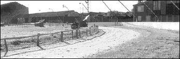 Racing first started in Dundalk Greyhound Track in the 1930's
