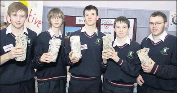 At the Student Enterprise Awards hosted by Wicklow County Enterprise Board in Clermont Campus were David Collard, Austin Kane, Emmet Cullen, Cormac Geraghy, Mark Treacy from Colaiste Cill Mhantain.