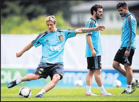 Fernando Torres (left) may be handed the striker's role by Spain manager Del Bosque