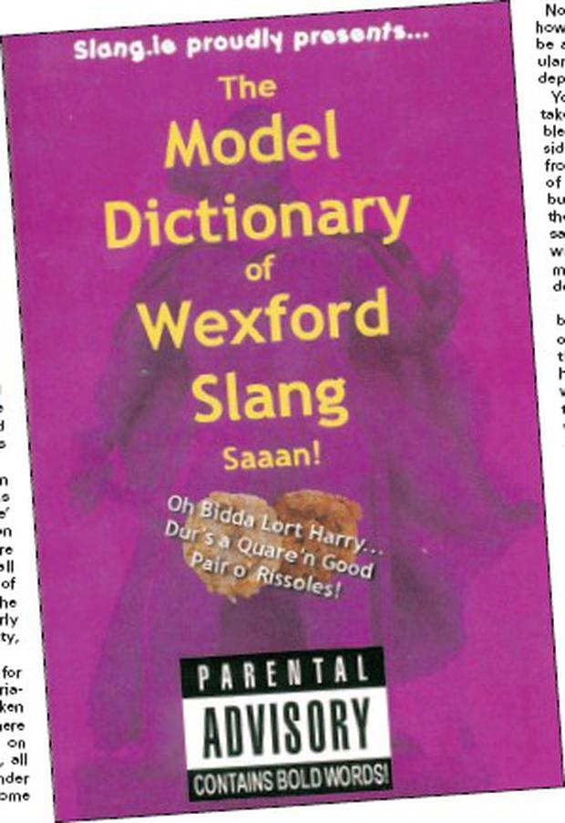 Der's some quare funny words in dis yoke, boy! - Independent ie