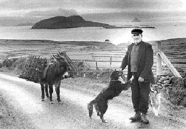 The late Peadí Mhicil Ó Súilleabháin on the Clasach overlooking the islands where he was born. Pic: Kevin Coleman