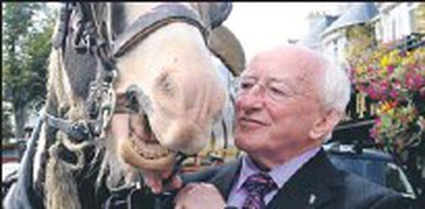 HORSE SENSE: Our new President will do us proud, pity the same can't said of our politicians.
