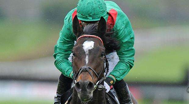Melbourne Cup top weight Alandi, with Mick Kinane up, on the way to winning the Vintage Crop Stakes at Navan last year