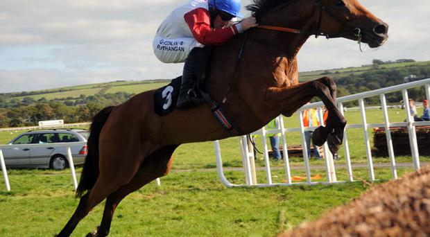 Eric McNamara's Ponmeoath, with Paddy Flood up, soars over the final fence on the way to his second Kerry National win in 2008 - having finished sixth last year, the Listowel course specialist bids for his third success in Wednesday's big race.