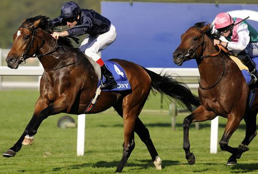 Rip Van Winkle winning last year's Queen Elizabeth II Stakes from Zacinto. Photo: PA