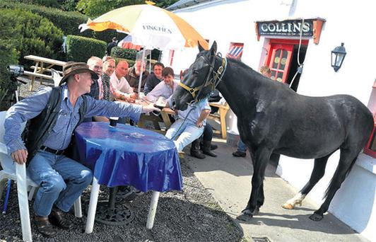 Frank Castle offers Blackie the horse a pint at the Four Alleys Bar during the annual Sams Cross horse fair at Clonakilty, Co Cork