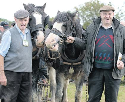 Edward and Henry Dowse from Co Wicklow at the Ploughing