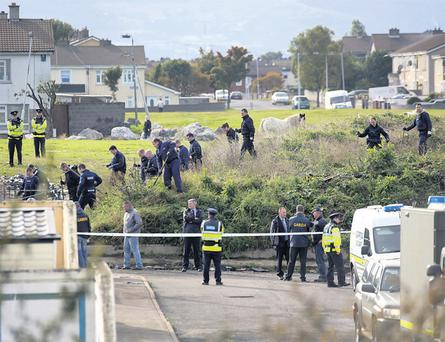 Gardai searching the halting site in north Dublin where the Army bomb squad was called after a suspect device was found