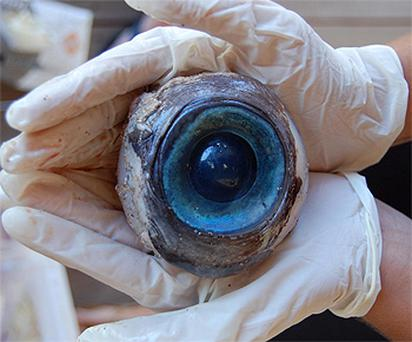 The giant eyeball found by a man walking on Pompano Beach, Florida