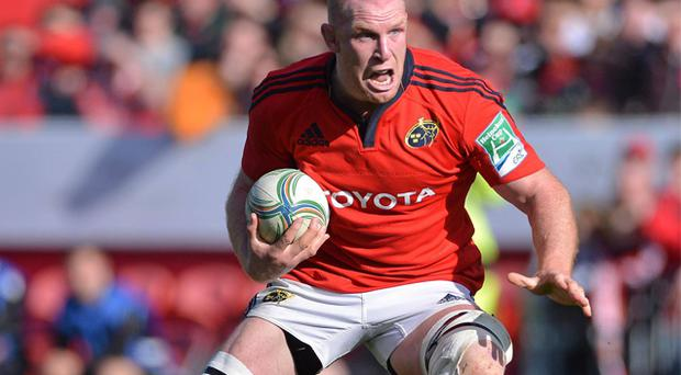 Paul O'Connell in action for Munster in their comfortable victory over Edinburgh