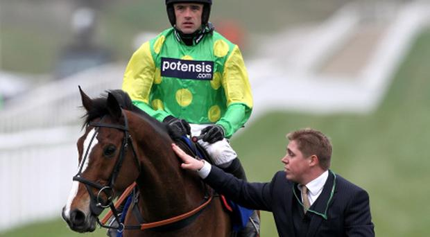 File photo dated 16/03/2012 of Kauto Star and jockey Ruby Walsh being led back to the stables after Kauto Star was pulled up during the Betfred Cheltenham Gold Cup Chase. PRESS ASSOCIATION Photo. Issue date: Wednesday October 31, 2012. Paul Nicholls has confirmed the incredible Kauto Star has run his final race. See PA Story RACING Star. Photo credit should read: David Davies/PA Wire. Use subject to restrictions. Editorial use only. No commercial use. Call +44 (0)1158 447447 for further information.