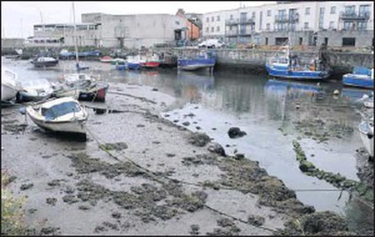 Balbriggan Harbour is routinely cleaned by local authority staff, according to the council.