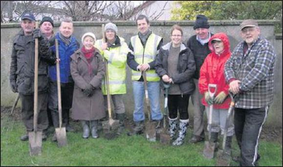 Balbriggan Tidy Towns volunteers at one of their planting days during the year.