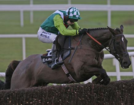 Leopardstown - 'The ground is good to firm at the moment and we'll take each day as it comes and decide what action to take.' Photo: PA