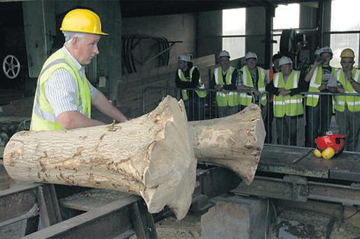 Jim Dunne preparing hurley butts at his sawmill in Drangan, Co Tipperary during an open day