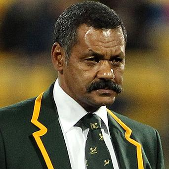 Springbok coach Peter de Villiers. Photo: Getty Images