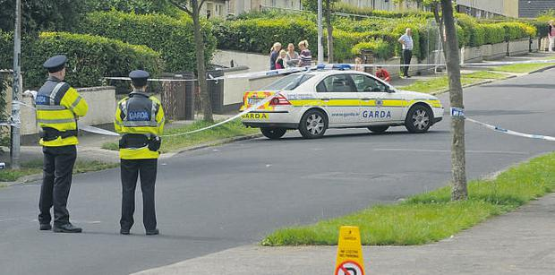 Gardai at the scene of the stabbing, on St Cronan's Avenue in Swords, of James Joyce