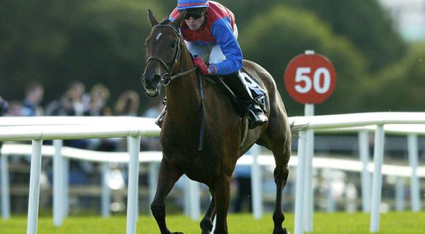 P'tit Fute easily wins the big amateur flat handicap at the Galway Festival in 2006 under James O'Farrell - the Francis Flood-trained gelding lines up in the feature event again this evening.