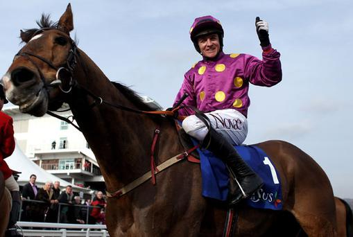 Big Zeb could return to action in the Fortria Chase at Navan. Photo: Getty Images