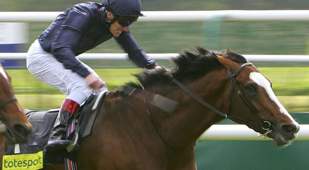 Age Of Aquarius will run in tomorrow's Ascot Gold Cup. Photo: Getty Images