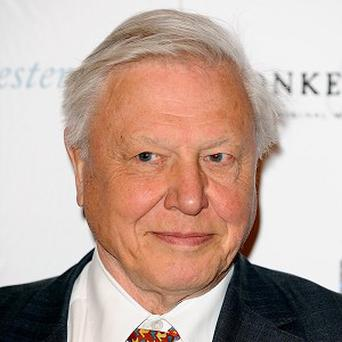 Sir David Attenborough was given the naturalist badge by the Scouts