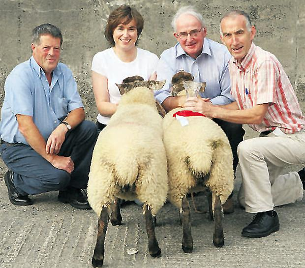 Jim Gahan, from sponsors East Suffolk Breeders; owners Karen and James Walsh, Ballytarsna, Nurney, Co Carlow; and mart manager John Murphy show off the best pair of Suffolk-Cheviot-cross ewe lambs at Tullow Sheep Breeders Show, Co Carlow