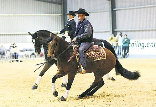 A total of 400 attendees turned up to watch the reining demonstration day at Coilog Equestrian Centre, which saw Tom Foran show off his reining skills