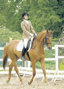 Strive for the next, higher level of horsemanship with AIRC gradings