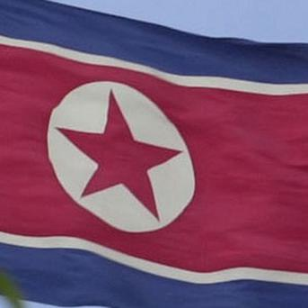 North Korea has offered ginseng to repay Cold War-era debt, according to Czech officials