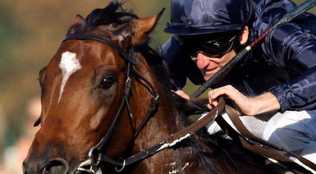 Rip Van Winkle ridden by Johnny Murtagh. Photo: Getty Images
