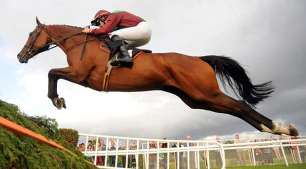 Glantara and Ruby Walsh soar over the final fence in spectacular style on their way to landing the Jameson Novice Chase at Killarney last night. Photo: Healy Racing