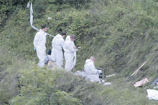 Grisly remains: Gardai at the scene near the Royal Canal in West Dublin. Photos: David Conachy