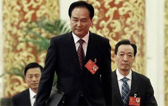 """Cai Mingzhao: """"The leading position of the Communist Party in China is a decision made by history and the people"""""""