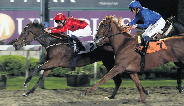 Night and Dance (left) ridden by Adam Kirby beats Inthar ridden by Mickael Barazalona at Kempton yesterday