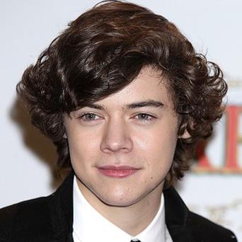 Harry Styles says he likes ambitious women