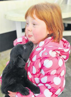 3-year-old Kayleigh Law from Portadown with her new puppy.