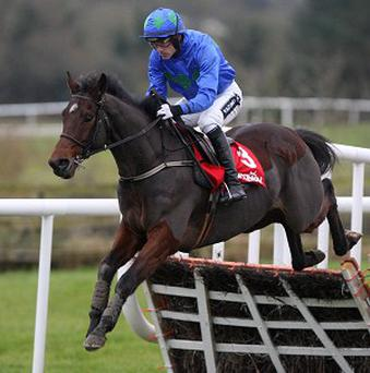 Hurricane Fly en route to Morgiana glory