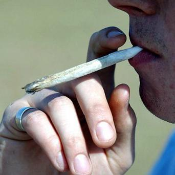 Foreign tourists can smoke cannabis in Dutch coffee houses