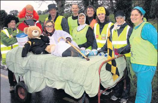 Members of the Ballygarrett Tidy Towns Association during their bed push.