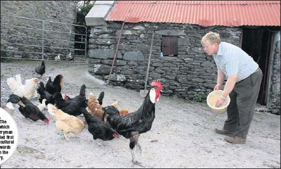 Muiris Fenton of Ballincota, Ventry, feeding his farm fowl. The photo by Ted Creedon, which was published in The Kerryman in June 2011, was awarded first prize in the Guild of Agricultural Journalists bi-annual awards ceremony in Dublin in the Best...