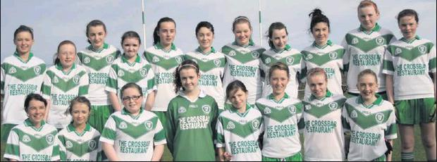 Eastern Harps, winners of the U14 'A' Ladies' County Championship.