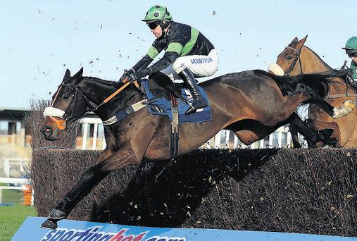 Harry Topper and Timmy Murphy jump to victory in the novice chase at Newbury