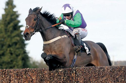Noel Fehily rides Opening Batsman to victory in the novice chase at Plumpton where the Cork jockey completed a double